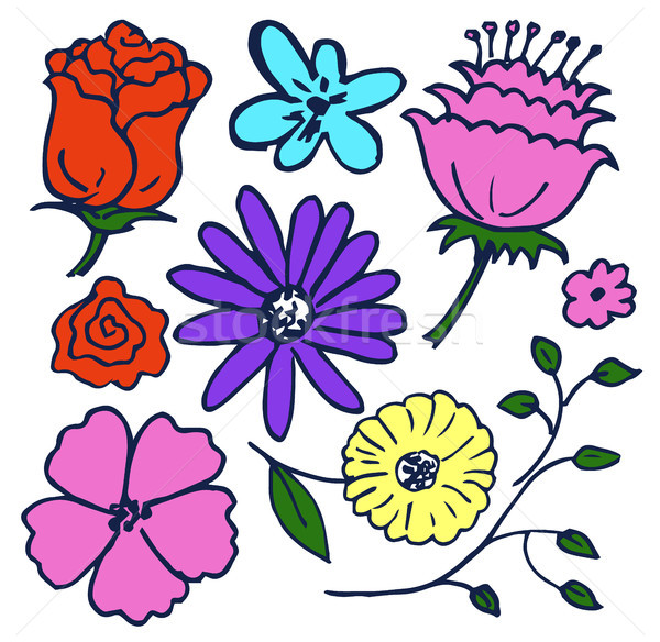 Massive of Lovely Flowers Vector Illustration Stock photo © robuart