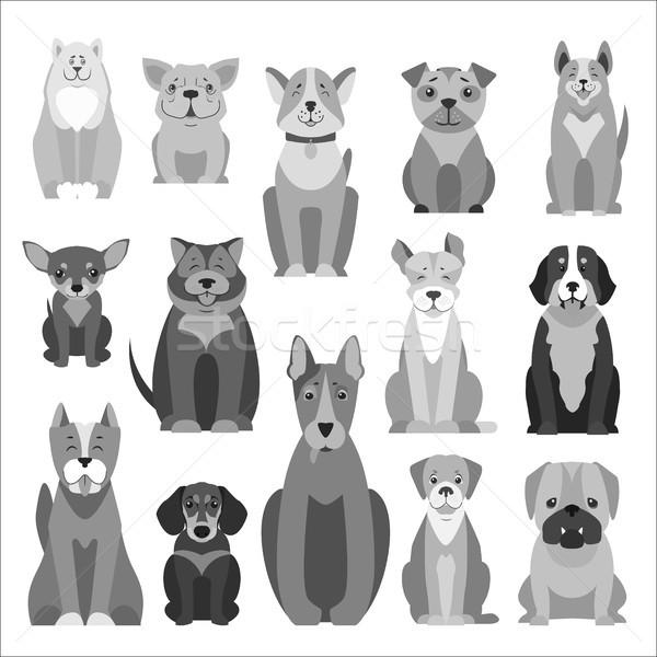 Cute honden cartoon vectoren Stockfoto © robuart
