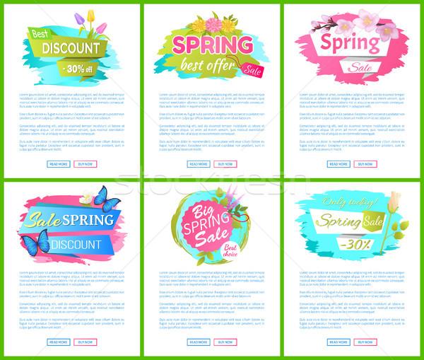 Wiosną sprzedaży reklama tag tulipan Zdjęcia stock © robuart