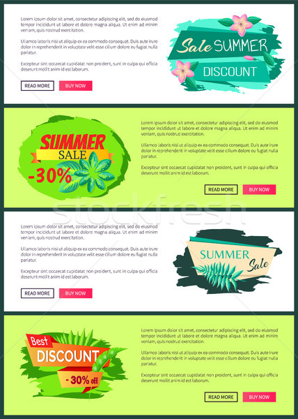 Seasonal Discount Poster Exotic Leaves Summer Sale Stock photo © robuart