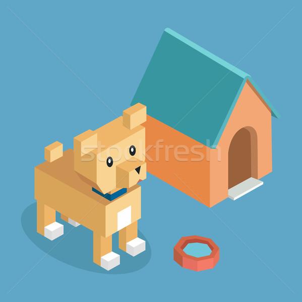 Animais de estimação cão ícone isométrica 3D projeto Foto stock © robuart