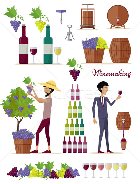 Winemaking Icon Set. Vintage Elite Strong Wine Stock photo © robuart
