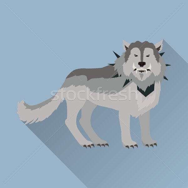 Grey Wolf in the Collar Stock photo © robuart