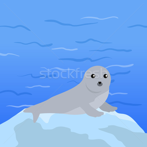 Earless seal Vector Illustration in Flat Design Stock photo © robuart