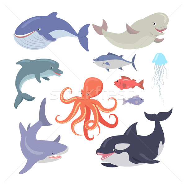 Bálna cápa polip meduza lazac tenger Stock fotó © robuart