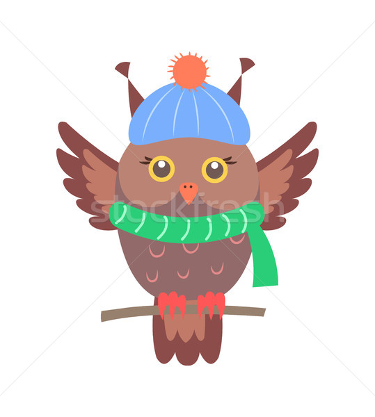 Closeup of Brown Sitting Owl Vector Illustration Stock photo © robuart