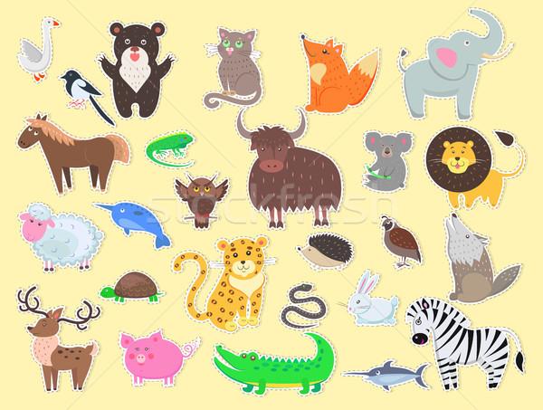 Exotisch huiselijk boerderijdieren poster Geel Stockfoto © robuart