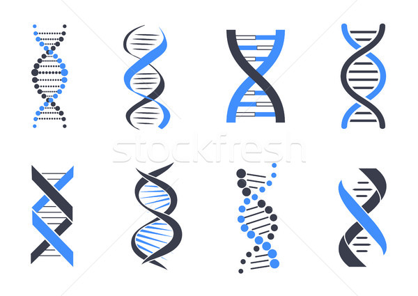DNA Helix Patterns Colorful Vector Illustration Stock photo © robuart