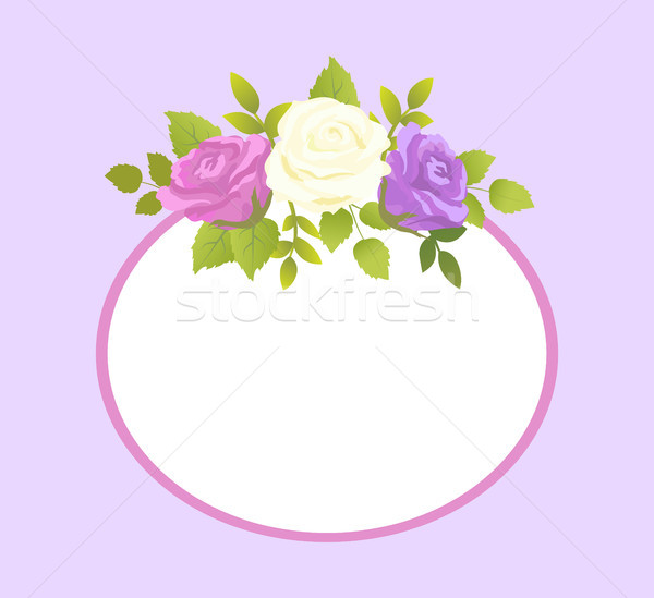 Decorative Frame for Photo or Text Spring Flower Stock photo © robuart