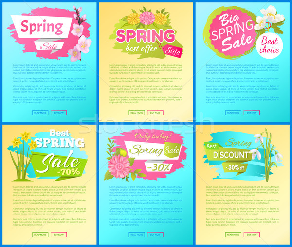 Best Offer Spring Big Sale Advertisement Pages Set Stock photo © robuart