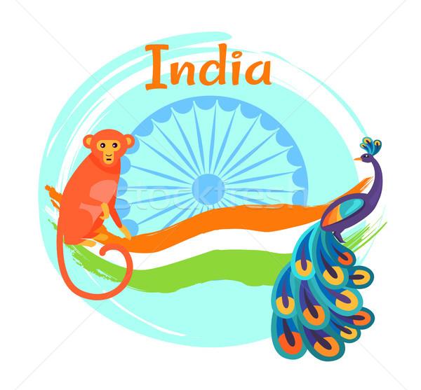 Jour affiche coloré paon vacances indian Photo stock © robuart