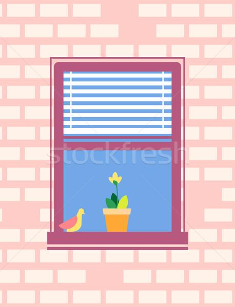Open Window with Jalousie Bird Sitting on Sill Stock photo © robuart