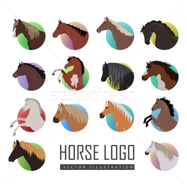 Set of Horse Logo Flat Style Vector illustrations Stock photo © robuart