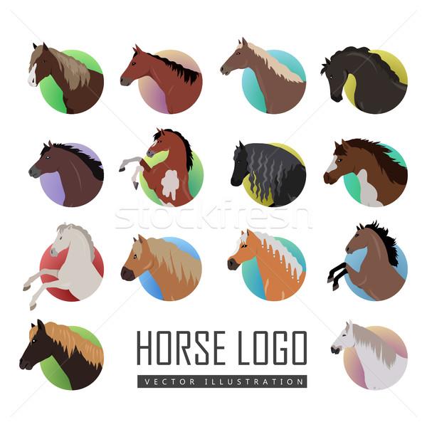 セット 馬 ロゴ スタイル ベクトル イラスト ストックフォト © robuart