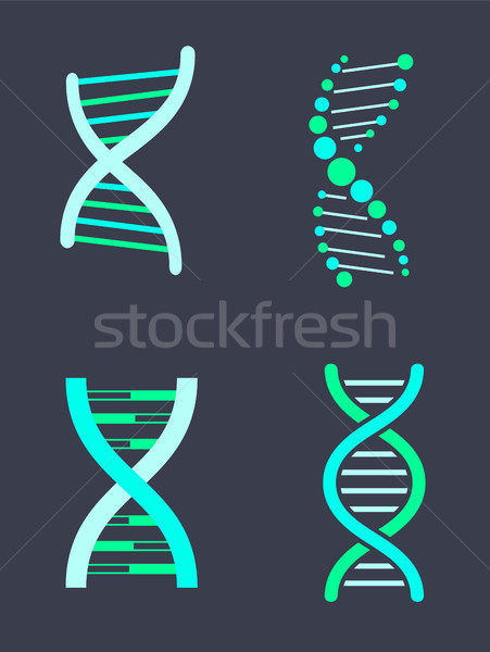 DNA Chain Variations of Bright Turquoise Color Set Stock photo © robuart