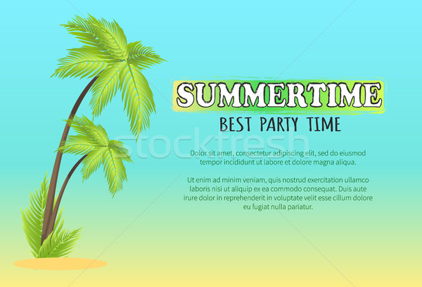 Zomertijd best party time vector poster palm Stockfoto © robuart