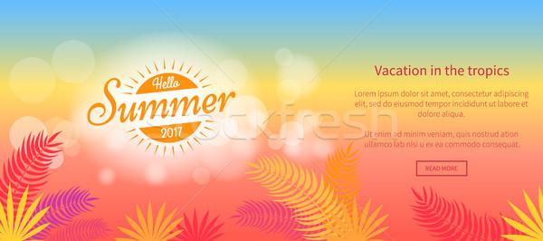 Hello lata wakacje tropikach wektora internetowych Zdjęcia stock © robuart