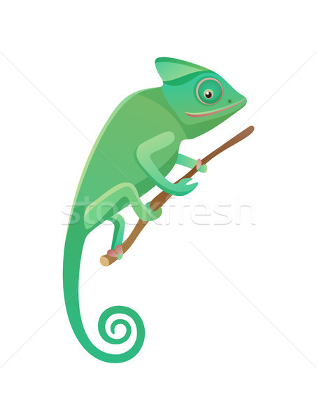 Lizard Sitting on Branch, Vector Illustration Stock photo © robuart