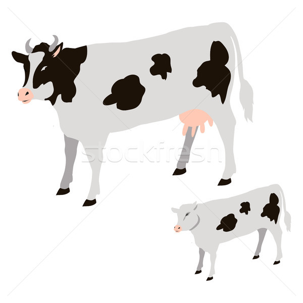 Cow and Calf with Black Spots Isolated Vector Stock photo © robuart