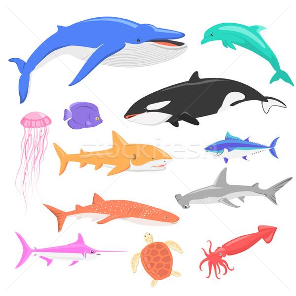 Tengeri állatvilág szett vízi állatok óceán Stock fotó © robuart