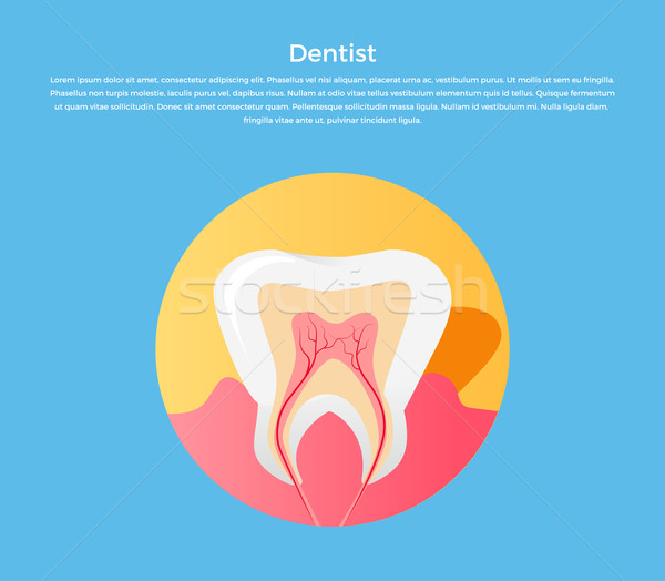 Stock photo: Dental Care Tooth Icon