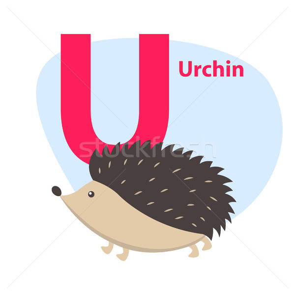 Zoo ABC Letter with Cute Urchin Cartoon Vector Stock photo © robuart