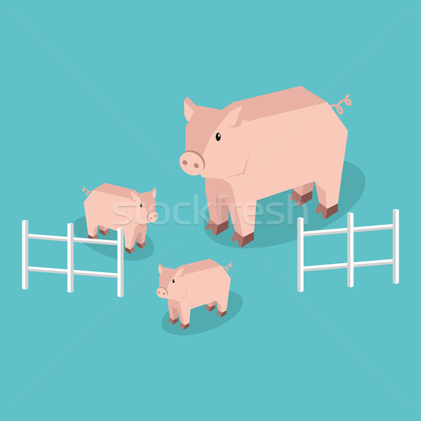 Isometric Pig with Piglets Isolated Stock photo © robuart