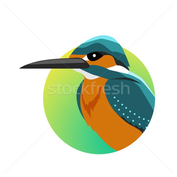 Ijsvogel ontwerp vector vogels wildlife stijl Stockfoto © robuart