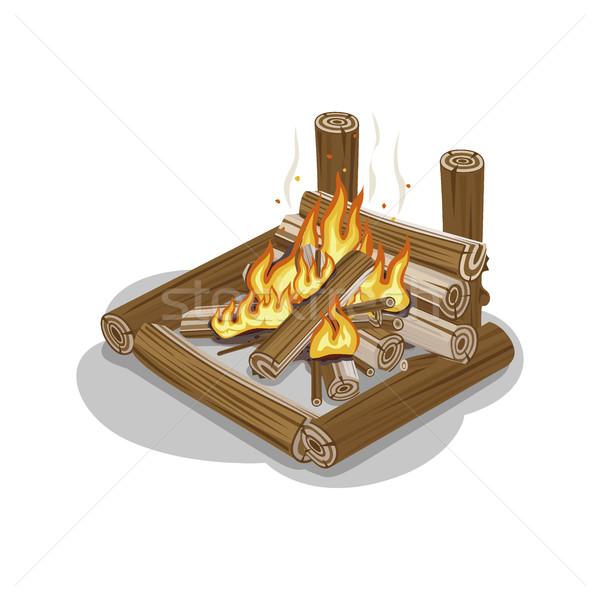 şenlik ateşi alev yalıtılmış beyaz şömine sıcak Stok fotoğraf © robuart