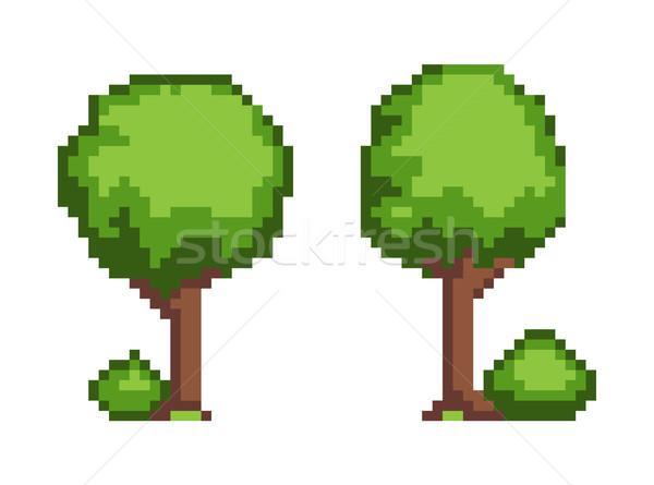 Baum Anlage Objekt Set Busch Stock foto © robuart