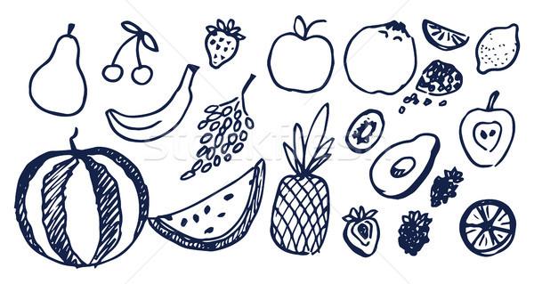 Lot of Black Hand Drawn Fruits Vector Illustration Stock photo © robuart