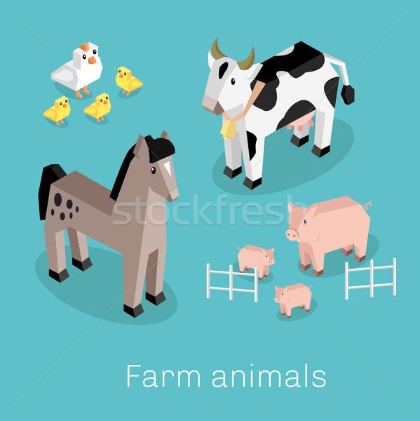 家畜 セット アイソメトリック 3D デザイン 牛 ストックフォト © robuart
