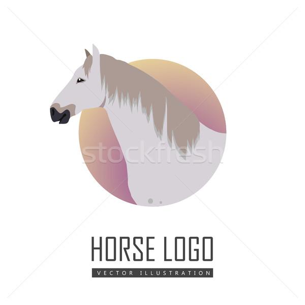 Horse Vector Illustration in Flat Design Stock photo © robuart