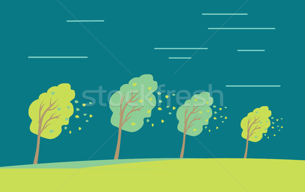 Strong Wind and Heavy Rainstorm in the Forest. Stock photo © robuart
