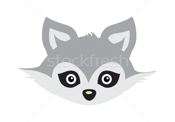Wolf Animal Carnival Mask. Wild Gray Forest Dog. Stock photo © robuart