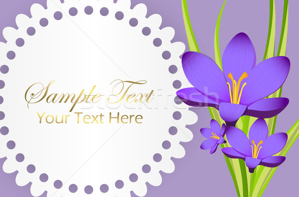 Cute Congratulation Postcard with Crocus Flower Stock photo © robuart
