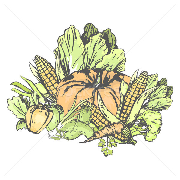Fresh Vegetables Set on White in Graphic Design Stock photo © robuart
