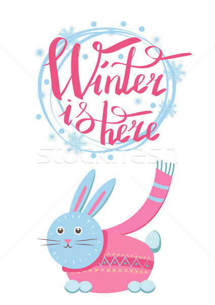 Winter is Here Little Gray Hare in Sweater Icon Stock photo © robuart
