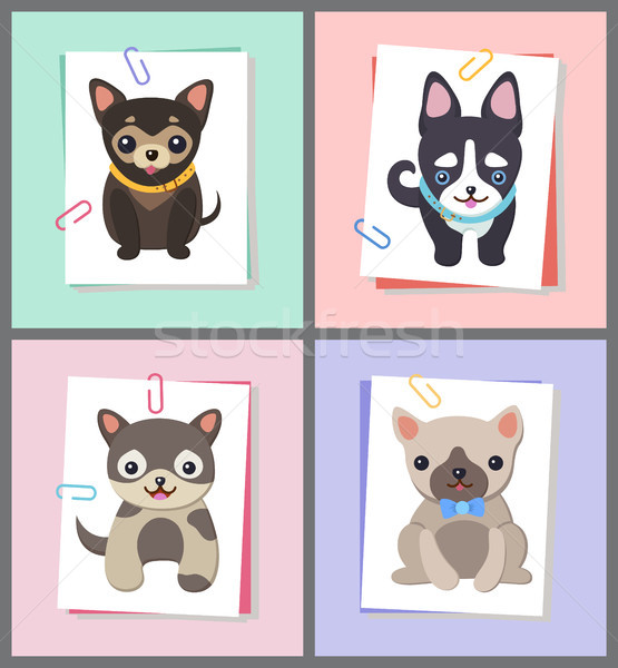 Dogs with Good Mood Collection Vector Illustration Stock photo © robuart