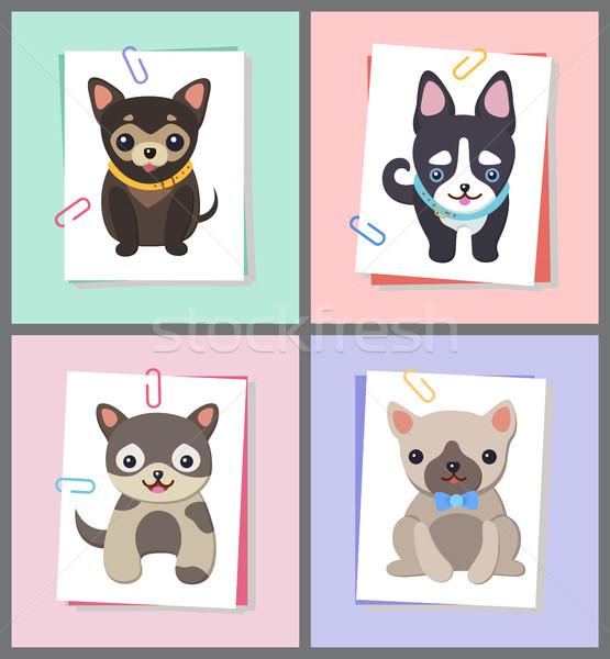 Kutyák jó hangulat gyűjtemény kiskutyák visel csokornyakkendő Stock fotó © robuart