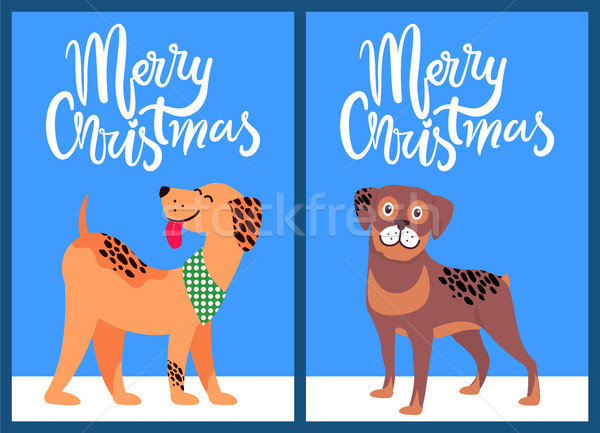 Merry Christmas Congratulation from Happy Pets Stock photo © robuart
