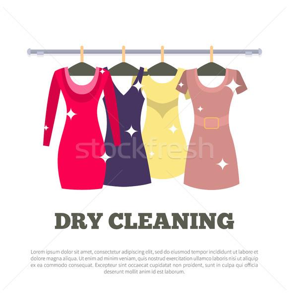 洗浄 サービス ポスター 女性 ドレス ストックフォト © robuart