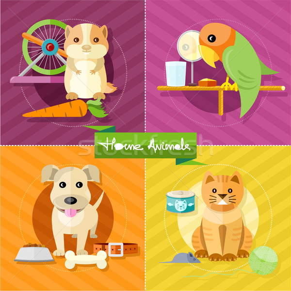 Hamster, parrot, cat and dog Stock photo © robuart