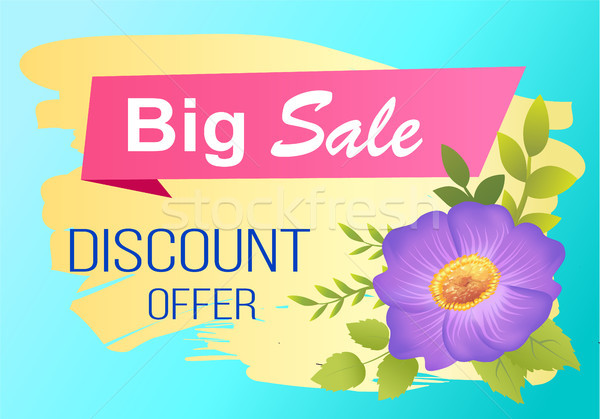 Discount Offer Big Sale Advertisement Label Viola Stock photo © robuart