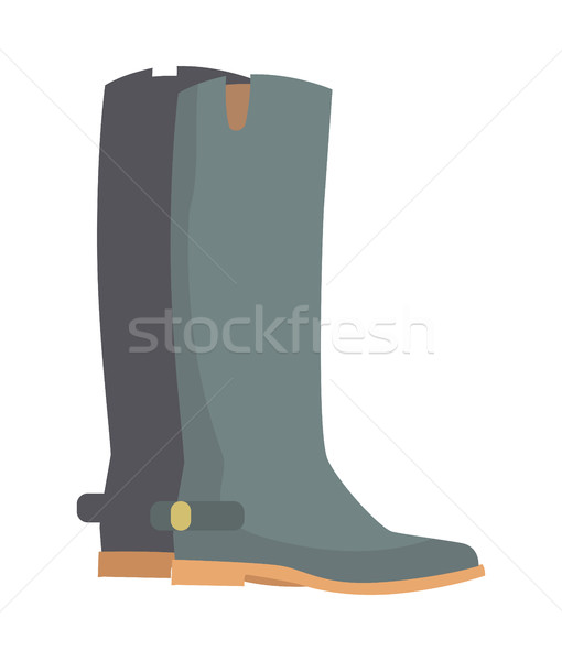 Winter Boots Isolated on White. Grey Rubber Shoes Stock photo © robuart