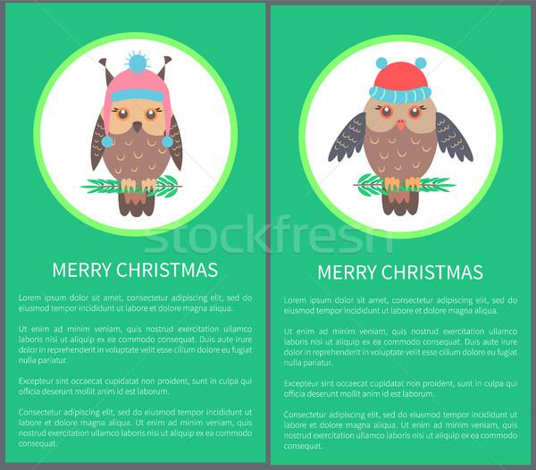 Wesoły christmas pocztówkę 60s piękna Sowa Zdjęcia stock © robuart