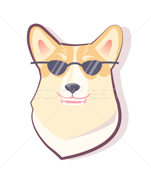 Dog Emoticon Puppy and Glasses Vector Illustration Stock photo © robuart