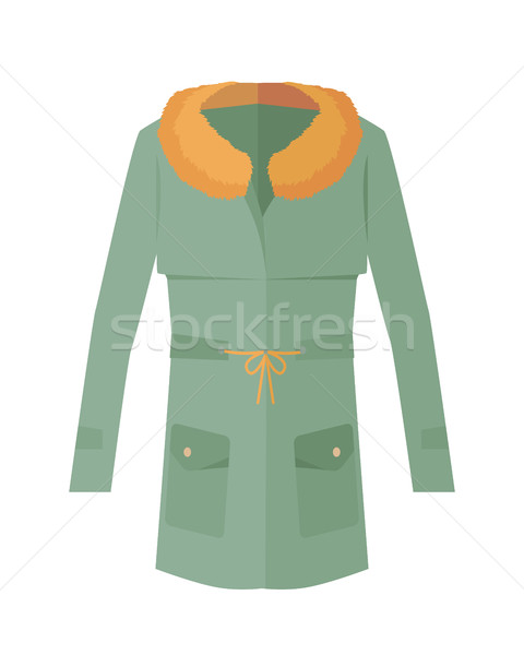 Women Jacket with Fur Collar Isolated on White. Stock photo © robuart