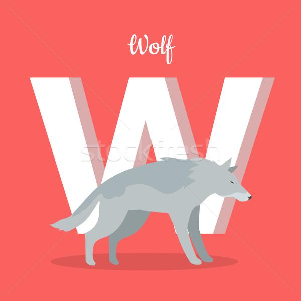 Hayvanlar alfabe mektup gri kurt öğrenme Stok fotoğraf © robuart