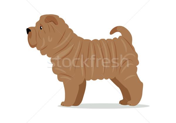 Durmak beyaz kahverengi köpek ikon logo Stok fotoğraf © robuart